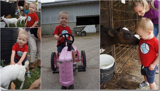 farm crawl collage