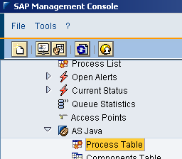 SAP MC management console