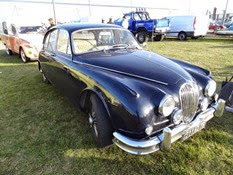 2014.09.27-071 Jaguar
