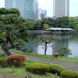 hibiya park in tokyo in Tokyo, Tokyo, Japan