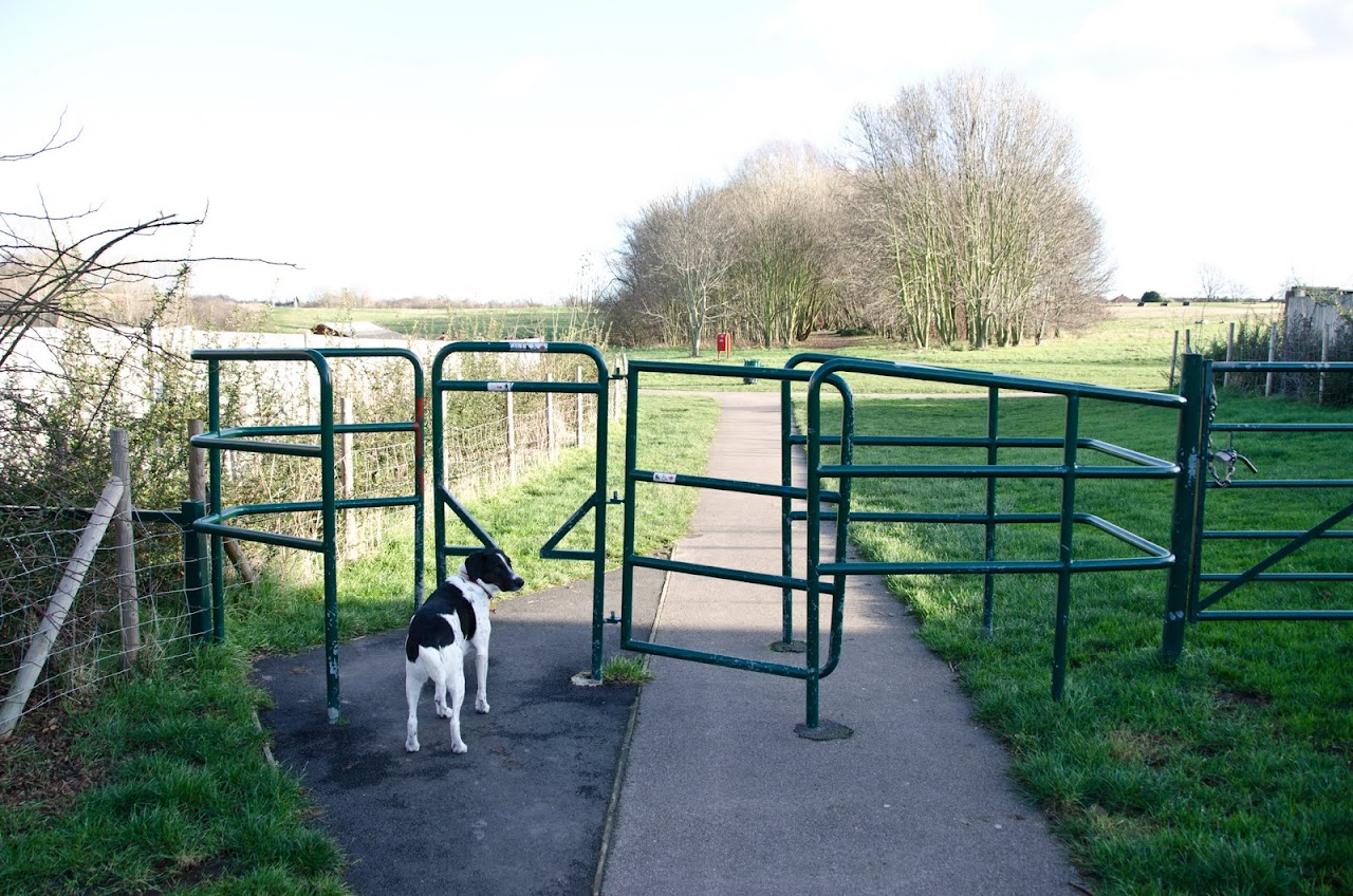 Green Chain Walk