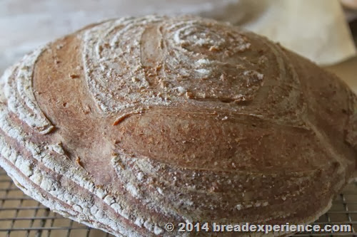 Bread with Sprouted Wheat Flour