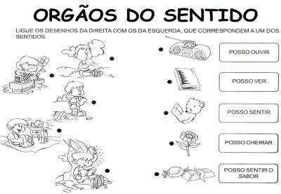 CLASSIFICANDO OS SENTIDO
