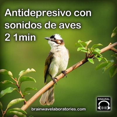 Antidepresivo con sonidos de aves