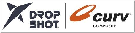 logo DS_Curv