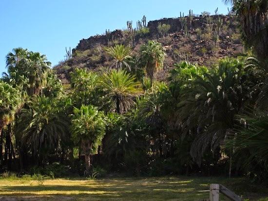San Iganacio