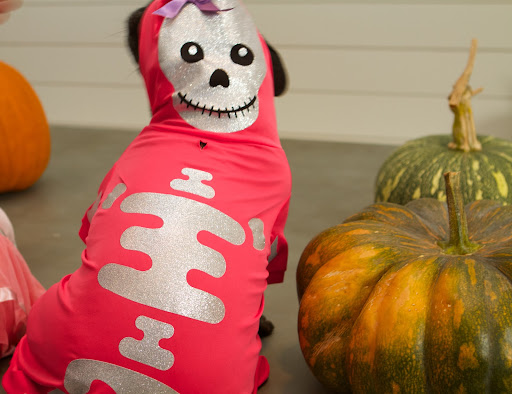 This Skeleton Costume is sure to scare the socks off of our neighbors when I show up wearing these glowing bones!