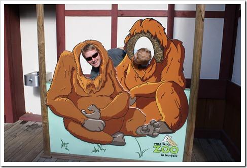 Zoo 015