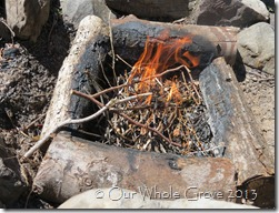 flame spirit3