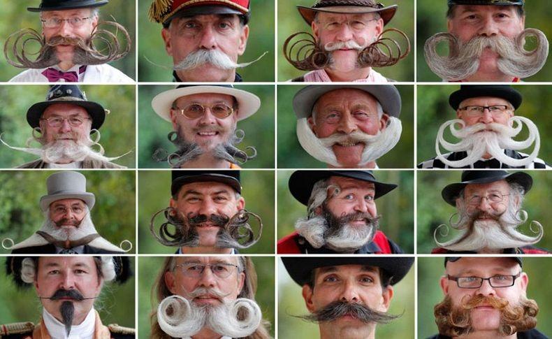 european-beard-2012-12