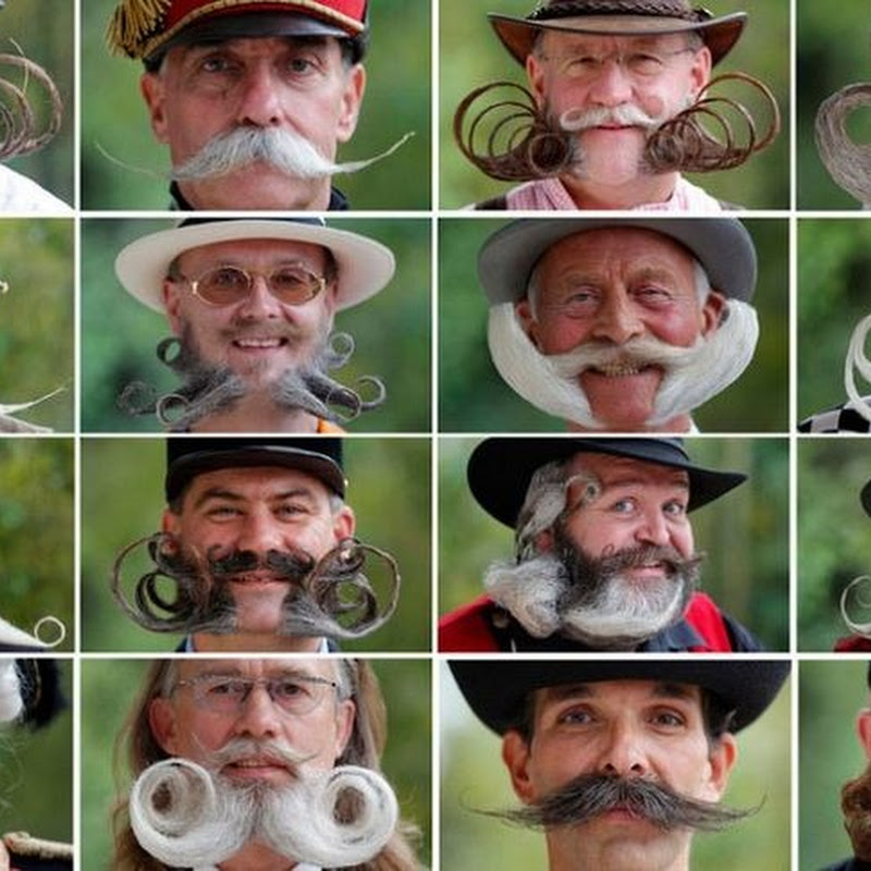 European Beard and Moustache Championships 2012