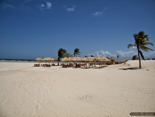 Praia do Pesqueiro, Soure - Parà, foto Carlos Macapuna