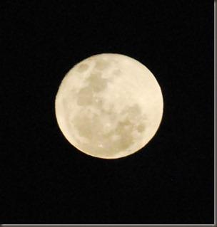 bulan2