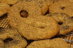 sourdough-bagels0012