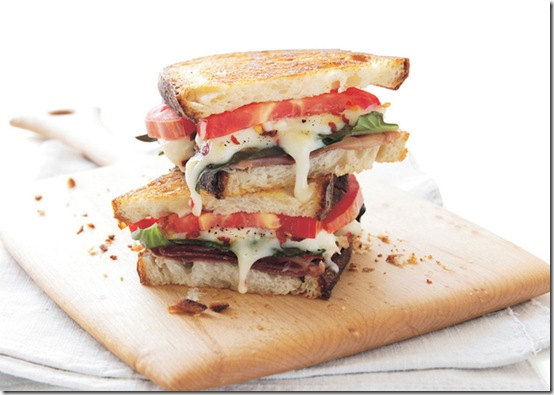 grilled-cheese-food-pron-4