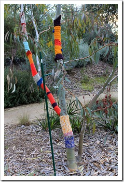 130119_UCDA_AustralianCollection_Natural-Transformations-yarn-bombing_05