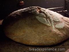 Maori-Bread 021