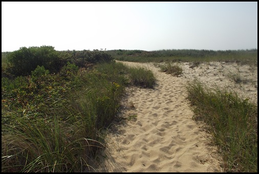 Provincetown 088