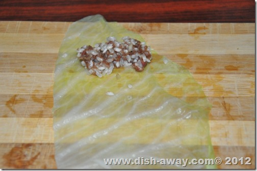Stuffed Cabbage Rolls Recipe by www.dish-away.com