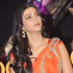 shruti_hassan_stills__34_ (1).jpg