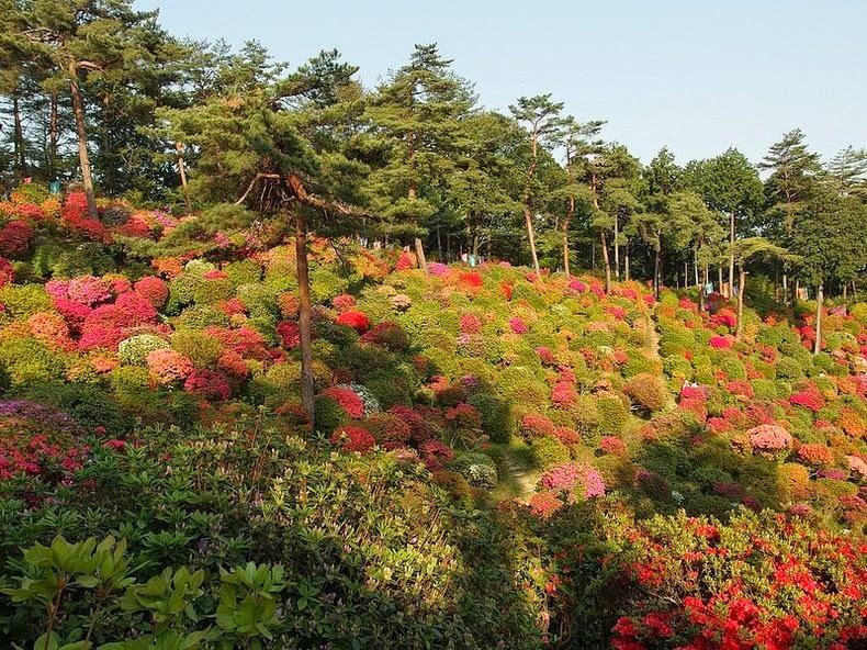 shiofune-kannon-ji-10