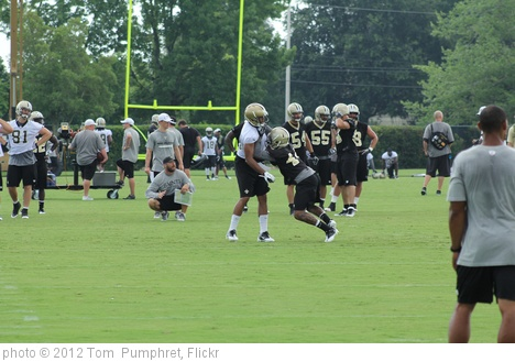 'New Orleans Saints Camp' photo (c) 2012, Tom  Pumphret - license: http://creativecommons.org/licenses/by-nd/2.0/