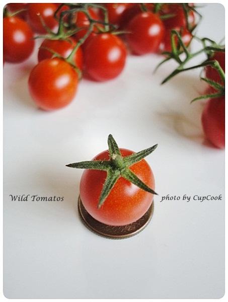 tomato (24)