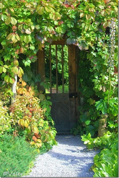 7-secret-door