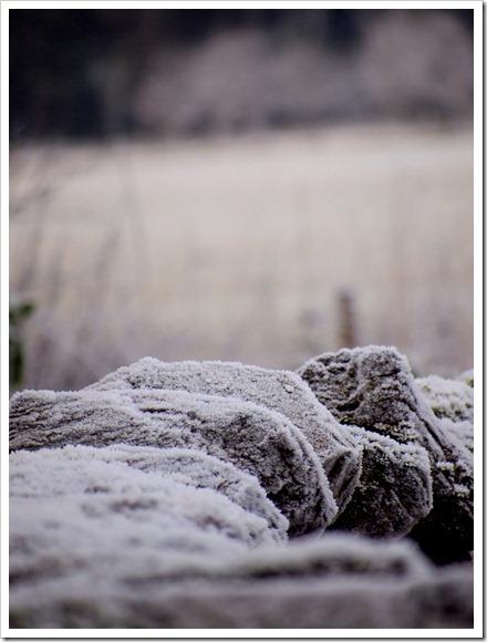 17 Jan 13 17-01-2012 11-01-26