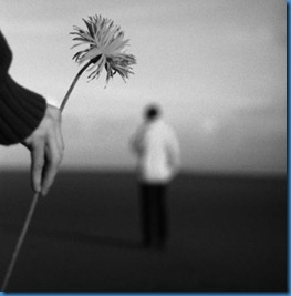 aprender a perdoar