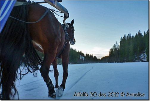 2012-des30-alf_02