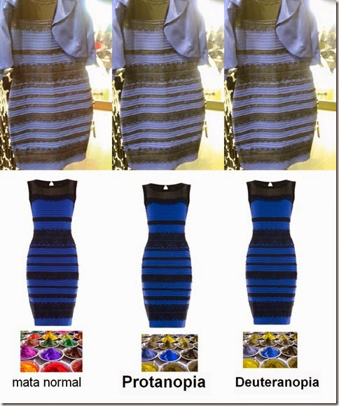 dress_white-gold_and_blue-black_in_color-blinds_www.dadanpurnama,com_
