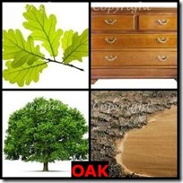 OAK- 4 Pics 1 Word Answers 3 Letters
