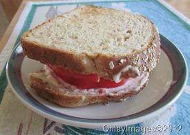 tomato sandwich (5)