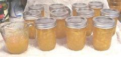 peach jam all done 11 jars