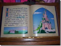 2013.07.11-003 livre La Belle au Bois dormant