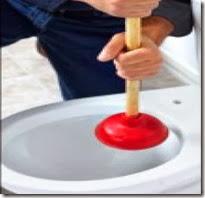 Plumber unblock toilet