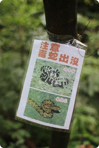 taiwan028-petit