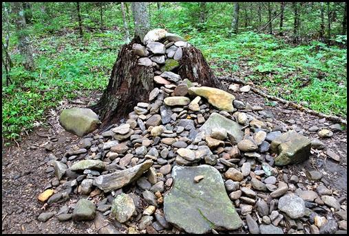 20i - Vogel SP - Bear Hair Trail - large chestnut stump grave marker killed by blight