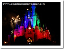 Disney Vacation 2009 436