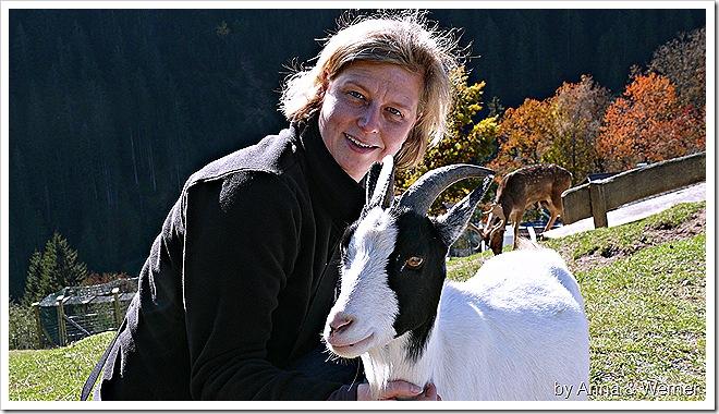 2011_10_30_067_WildparkAurich