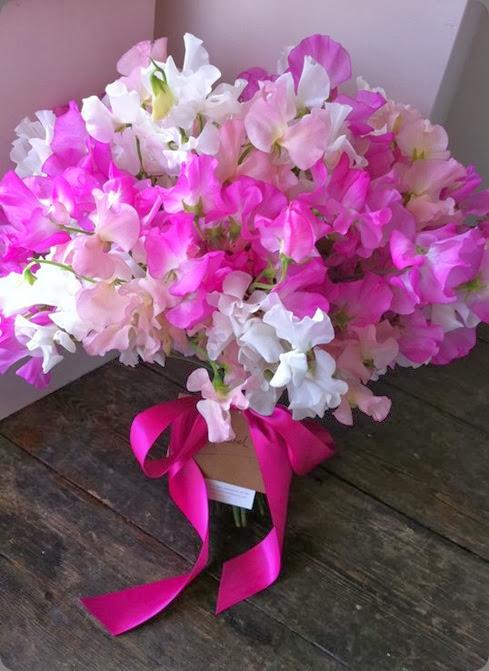sweet peas 254058_10150214078351992_1257085_n love lily