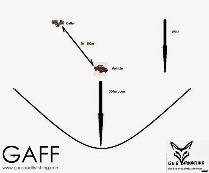 Jaracal-Caracal-Hunting (2).jpg
