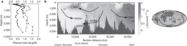 a, Representative profiles of total dissolved Hg from the North Atlantic near Bermuda (triangles), from the South Atlantic (diamonds) and the northeast Pacific Ocean (circles; the station labelled 'SAFe'). b, Global vertical distribution of Premin as interpolated from WOCE data (http://www.ewoce.org). Transect (black lines) is shown to the right. Figure generated using Ocean Data View (http://odv.awi.de/). AIW, Atlantic Intermediate water; NADW, North Atlantic Deep Water; AABW, Antarctic Bottom Water; PDW, Pacific Deep Water. Graphic: Lamborg, 2014