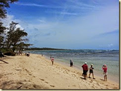 20140504_ malaekahana state beach 1 (Small)