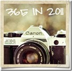 365in2011
