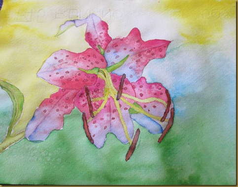 flower paintings 001