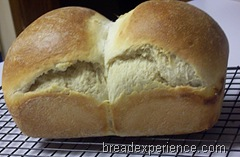 simple-milk-loaf 031