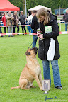 20100513-Bullmastiff-Clubmatch_31087.jpg