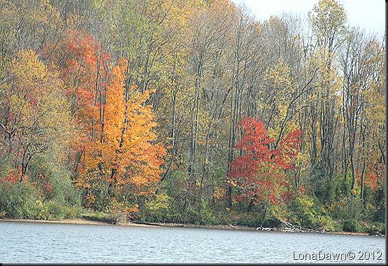 Ross_Lake6